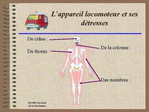 Lappareil locomoteur et ses dtresses Du crne Du