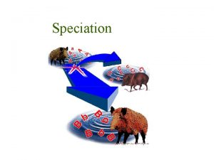 Speciation Species Definition Biological species a reproductively isolated