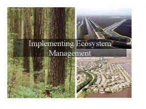Implementing Ecosystem Management An Ecosystem Management Process Step