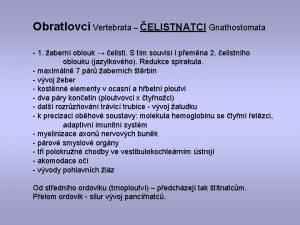 Obratlovci Vertebrata ELISTNATCI Gnathostomata 1 abern oblouk elisti