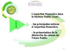 Lexpertise financire dans le Secteur Public Local les