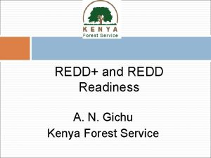 REDD and REDD Readiness A N Gichu Kenya