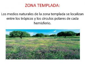 ZONA TEMPLADA Los medios naturales de la zona