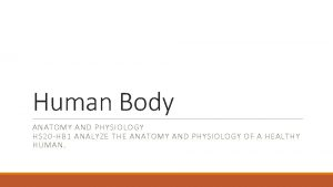 Human Body ANATOMY AND PHYSIOLOGY HS 20 HB