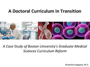 A Doctoral Curriculum in Transition A Case Study