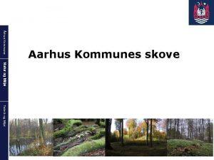rhus Kommune Aarhus Kommunes skove Natur og Milj