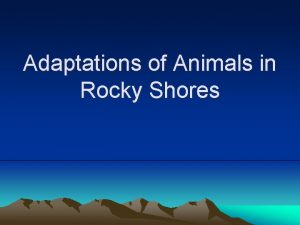 Adaptations of Animals in Rocky Shores Adaptations to