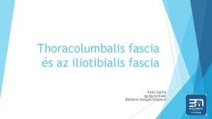 Thoracolumbalis fascia s az iliotibialis fascia Pat Zsfia