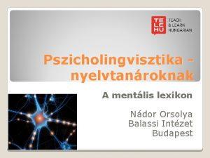 Pszicholingvisztika nyelvtanroknak A mentlis lexikon Ndor Orsolya Balassi