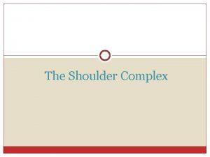 The Shoulder Complex General Knowledge The shoulder is
