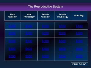 The Reproductive System Male Anatomy Male Physiology Female