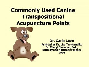 Commonly Used Canine Transpositional Acupuncture Points Dr Carla