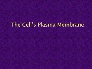 The Cells Plasma Membrane The Plasma Membrane Is