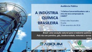 Audincia Pblica A INDSTRIA QUMICA BRASILEIRA A Defesa