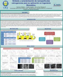 Sntesis y caracterizacin de nanopartculas calcogenuras para su