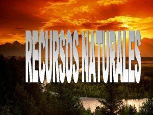 QU SON LOS RECURSOS NATURALES Se denominan recursos