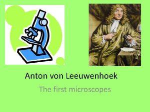 Anton von Leeuwenhoek The first microscopes Van Leeuwenhoeks