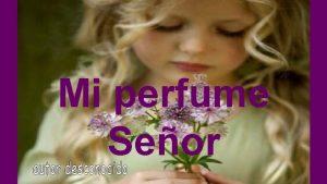 Mi perfume Seor Mi perfume Seor es en