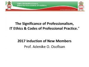 The Significance of Professionalism IT Ethics Codes of