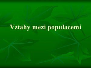 Vztahy mezi populacemi Vztahy mezi organismy komenzalismus A