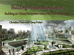 Building Phytotechnologies Building an Urban Ecosystem within the