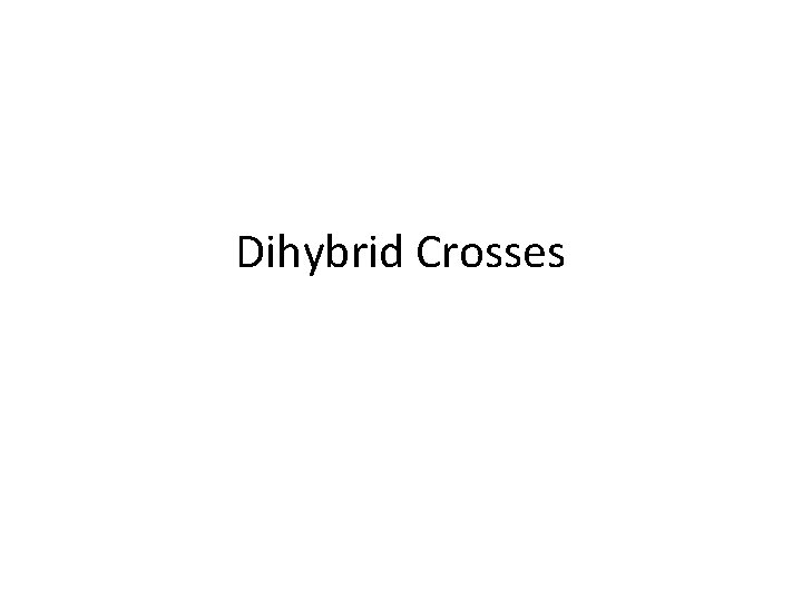 Dihybrid Crosses When is it used A dihybrid