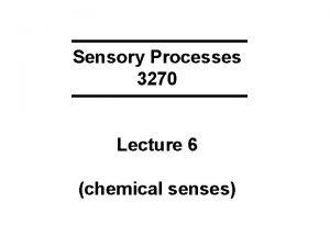 Sensory Processes 3270 Lecture 6 chemical senses KEYWORDS