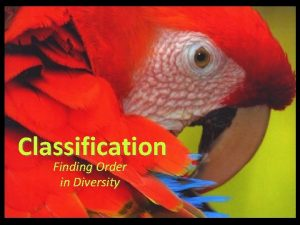 Classification Finding Order in Diversity Finding Order in