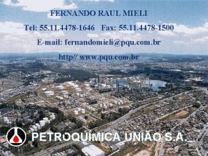 FERNANDO RAUL MIELI Tel 55 11 4478 1646