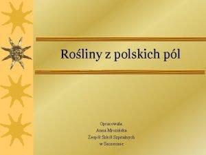 Roliny z polskich pl Opracowaa Anna Mroziska Zesp