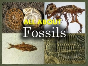 ALL ABOUT Notes Fossils Fossils are perserved remains