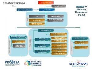 Estructura Organizativa 2017 Consejo Directivo Nmero de Mujeres
