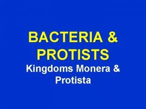 BACTERIA PROTISTS Kingdoms Monera Protista BACTERIA Kingdom Monera