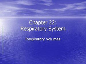 Chapter 22 Respiratory System Respiratory Volumes Respiratory Volumes