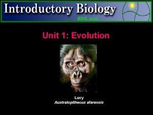 Unit 1 Evolution Lucy Australopithecus afarensis Charles Darwin