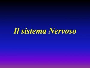 Il sistema Nervoso Il sistema nervoso Per sistema