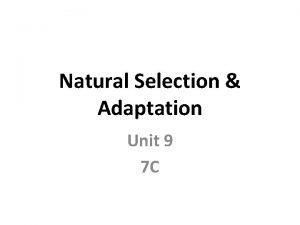 Natural Selection Adaptation Unit 9 7 C Natural