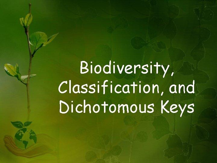 Biodiversity Classification and Dichotomous Keys Biodiversity Biodiversity is