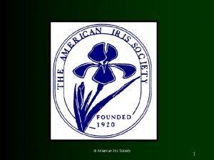 American Iris Society 1 North American Dykes Medal