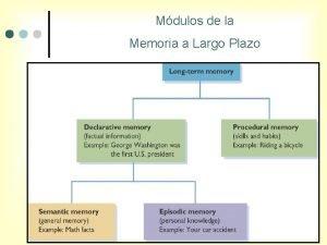 Mdulos de la Memoria a Largo Plazo Mdulos