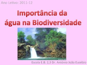 Ano Letivo 2011 12 Importncia da gua na