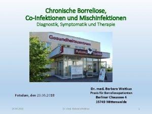 Chronische Borreliose CoInfektionen und Mischinfektionen Diagnostik Symptomatik und