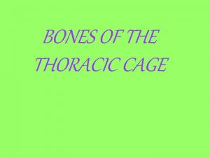BONES OF THE THORACIC CAGE Name the green