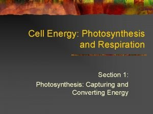 Cell Energy Photosynthesis and Respiration Section 1 Photosynthesis