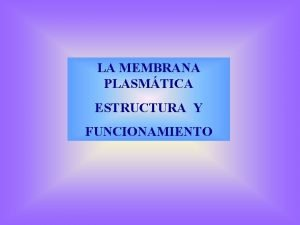 LA MEMBRANA PLASMTICA ESTRUCTURA Y FUNCIONAMIENTO CLULA eucariota