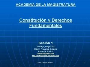 ACADEMIA DE LA MAGISTRATURA Constitucin y Derechos Fundamentales