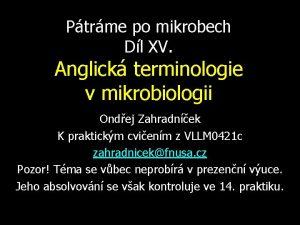 Ptrme po mikrobech Dl XV Anglick terminologie v
