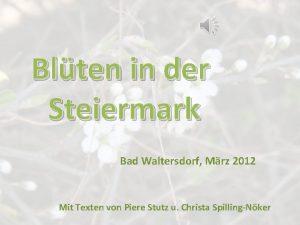 Blten in der Steiermark Bad Waltersdorf Mrz 2012