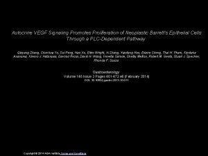 Autocrine VEGF Signaling Promotes Proliferation of Neoplastic Barretts