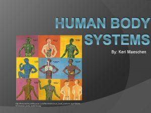 HUMAN BODY SYSTEMS By Keri Maeschen http finleymslmc